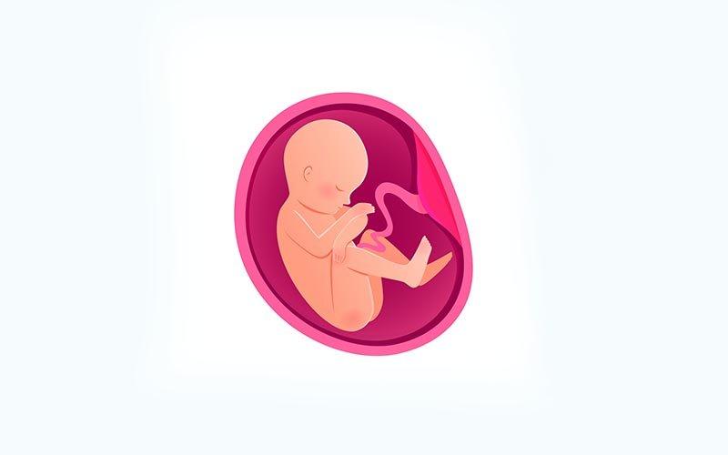 Tüp bebek şansı